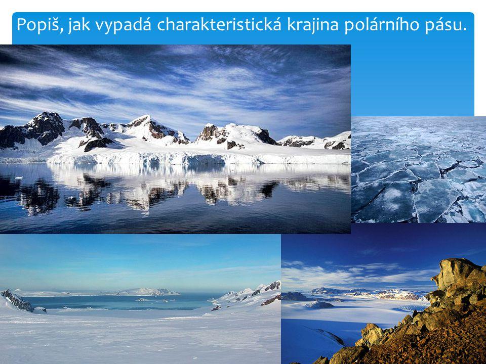 Popiš, jak vypadá charakteristická krajina polárního pásu.