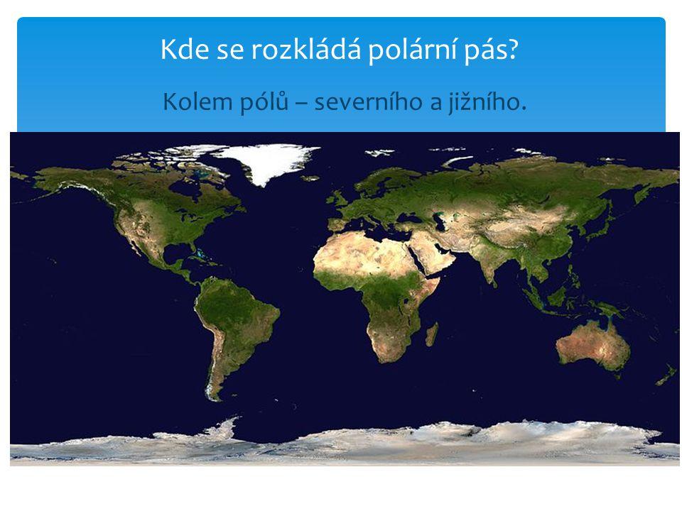 Do kterých kontinentů zasahuje polární pás? S Amerika, S Evropa, S Asie, Antarktida