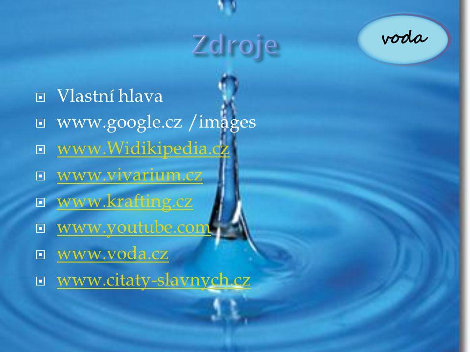  Vlastní hlava  www.google.cz /images  www.Widikipedia.cz www.Widikipedia.cz  www.vivarium.cz www.vivarium.cz  www.krafting.cz www.krafting.cz 