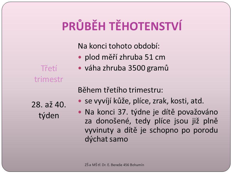 PRŮBĚH TĚHOTENSTVÍ Třetí trimestr 28. až 40. týden Na konci tohoto období:  plod měří zhruba 51 cm  váha zhruba 3500 gramů Během třetího trimestru: