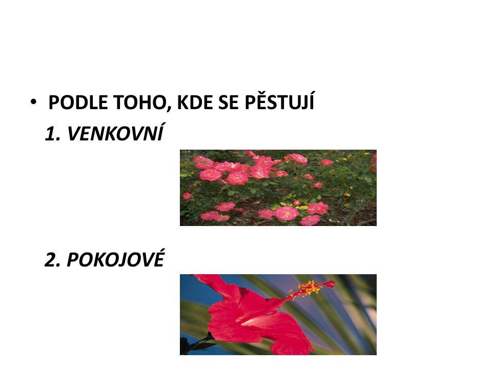 • PODLE TOHO, KDE SE PĚSTUJÍ 1. VENKOVNÍ 2. POKOJOVÉ