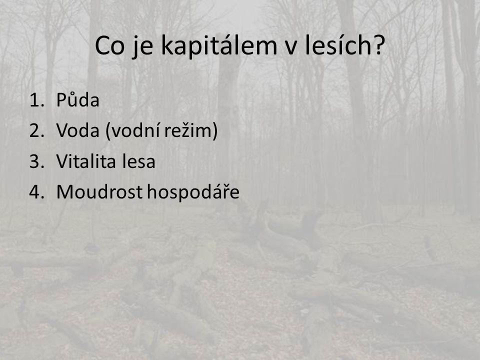 Co je kapitálem v lesích? 1.Půda 2.Voda (vodní režim) 3.Vitalita lesa 4.Moudrost hospodáře