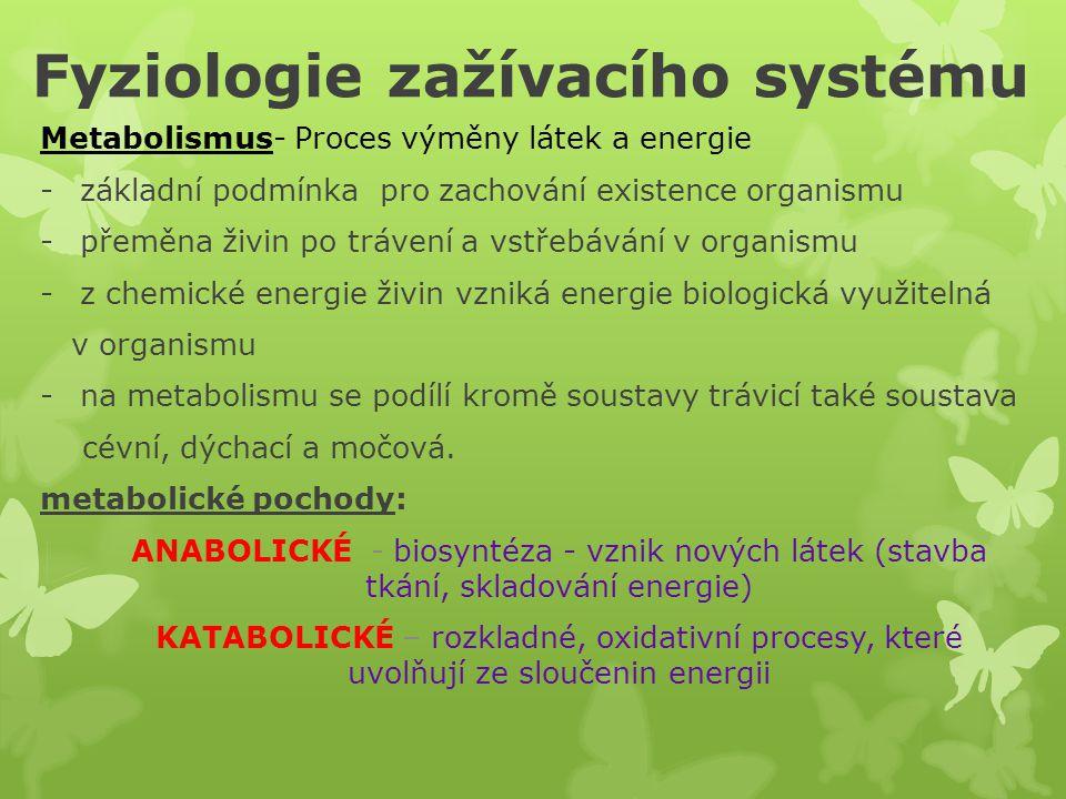 Fyziologie zažívacího systému Metabolismus- Proces výměny látek a energie -základní podmínka pro zachování existence organismu -přeměna živin po trávení a vstřebávání v organismu -z chemické energie živin vzniká energie biologická využitelná v organismu -na metabolismu se podílí kromě soustavy trávicí také soustava cévní, dýchací a močová.