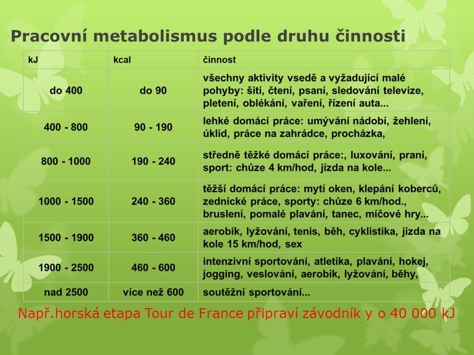 Pracovní metabolismus podle druhu činnosti Např.horská etapa Tour de France připraví závodník y o 40 000 kJ