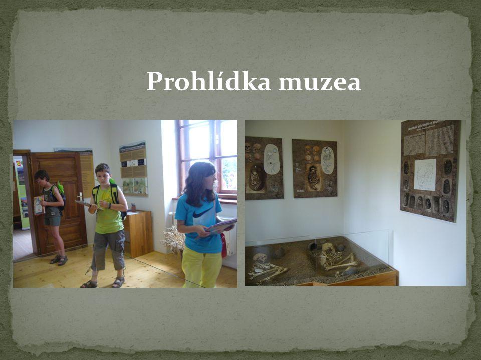 Prohlídka muzea