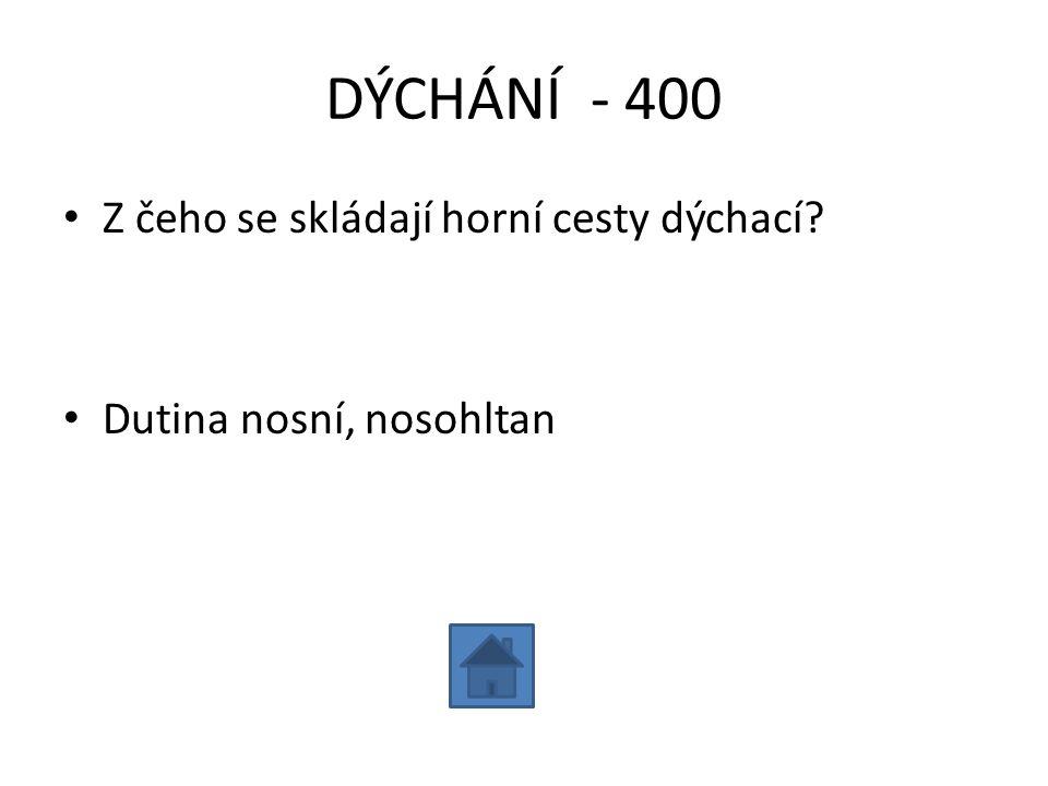 DÝCHÁNÍ - 500 • Jmenuj části dolních cest dýchacích: • Hrtan, průdušnice, průdušky, průdušinky, plicní sklípky (alveoly)