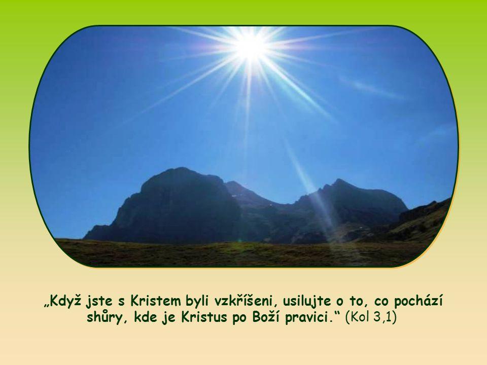 """""""Když jste s Kristem byli vzkříšeni, usilujte o to, co pochází shůry, kde je Kristus po Boží pravici. (Kol 3,1)"""