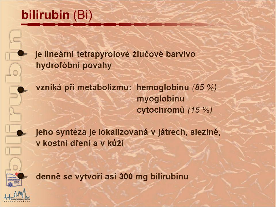 je lineární tetrapyrolové žlučové barvivo hydrofóbní povahy vzniká při metabolizmu: hemoglobinu (85 %) myoglobinu cytochromů (15 %) jeho syntéza je lokalizovaná v játrech, slezině, v kostní dřeni a v kůži denně se vytvoří asi 300 mg bilirubinu bilirubin (Bi)