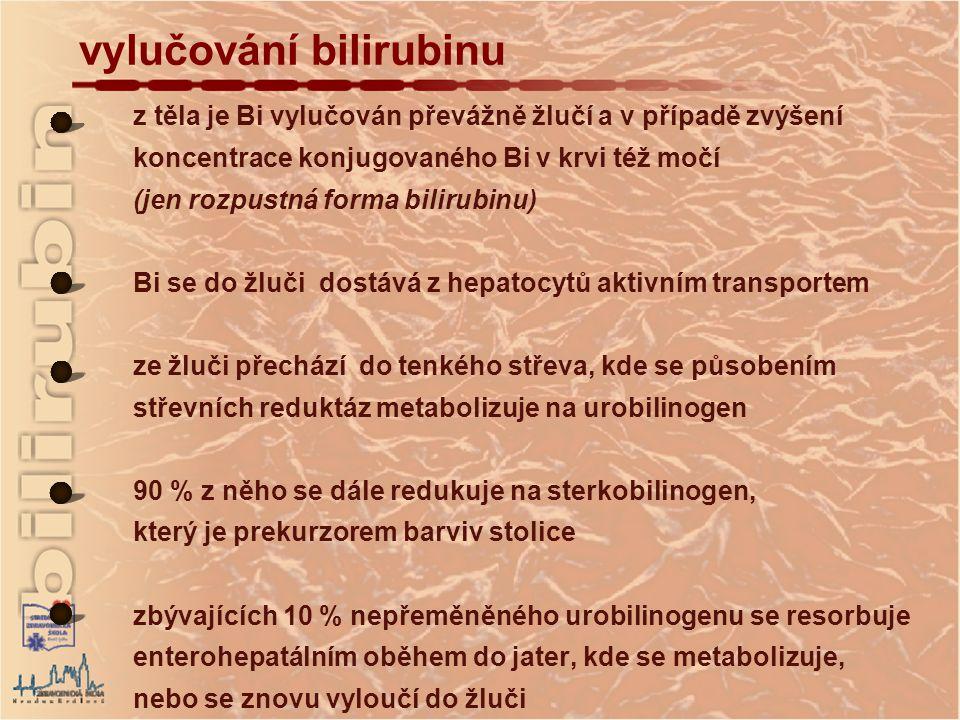 vylučování bilirubinu z těla je Bi vylučován převážně žlučí a v případě zvýšení koncentrace konjugovaného Bi v krvi též močí (jen rozpustná forma bilirubinu) Bi se do žluči dostává z hepatocytů aktivním transportem ze žluči přechází do tenkého střeva, kde se působením střevních reduktáz metabolizuje na urobilinogen 90 % z něho se dále redukuje na sterkobilinogen, který je prekurzorem barviv stolice zbývajících 10 % nepřeměněného urobilinogenu se resorbuje enterohepatálním oběhem do jater, kde se metabolizuje, nebo se znovu vyloučí do žluči