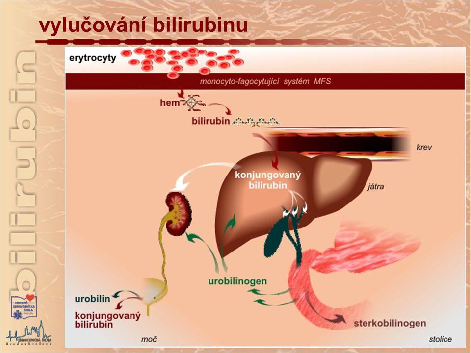 hyperbilirubinemie genetického původu Dubin-Johnsonův syndrom autozomální recesivní onemocnění porucha odevzdávání konjugovaného bilirubinu z jaterní buňky do žlučové kapiláry hodnoty konjugovaného bilirubinu jsou zvýšené (do 170 µmol/l) Rotorův syndrom chronická familiární hyperbilirubinemie podobná jako Dubin-Johnsonův syndrom Gilbertův syndrom autosomální recesivní onemocnění porucha transportu nekonjugovaného Bi ze sinusoidní kapiláry do hepatocytu syndrom je benigní, bez jakéhokoliv poškození funkce jaterních buněk hodnoty Bi jsou menší než 50 µmol/l