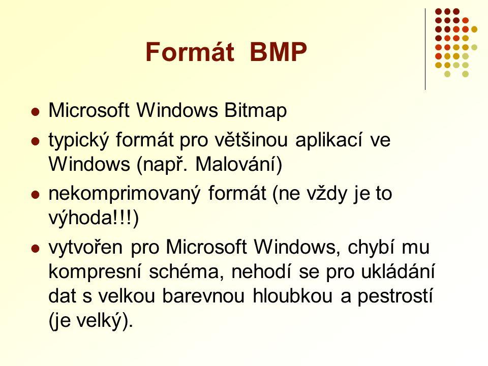 Microsoft Windows Bitmap  typický formát pro většinou aplikací ve Windows (např. Malování)  nekomprimovaný formát (ne vždy je to výhoda!!!)  vytv