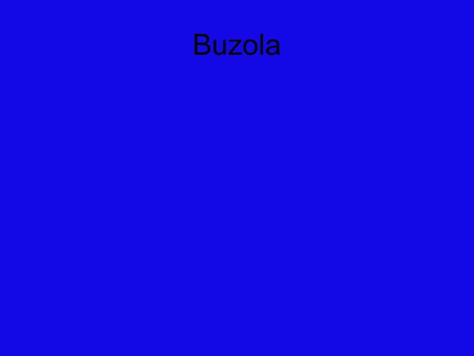 Buzola (také busola) je jednoduchý přístroj, který slouží k orientaci v terénu, určování světových stran a měření azimutu.