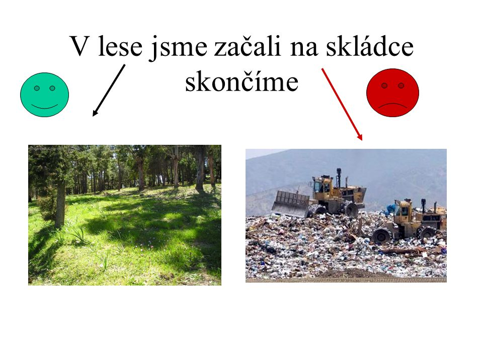 CHRAŇTE LESY •Díky lesu máme dostatek kyslíku abychom přežili. • Když lesy vykácíme zemřeme.