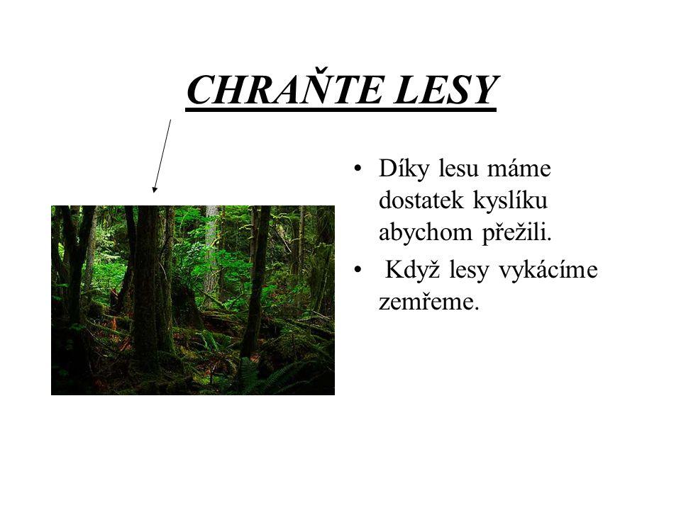 CHRAŇTE LESY !!Chraňte lesy aspoň pro ten váš život.!!