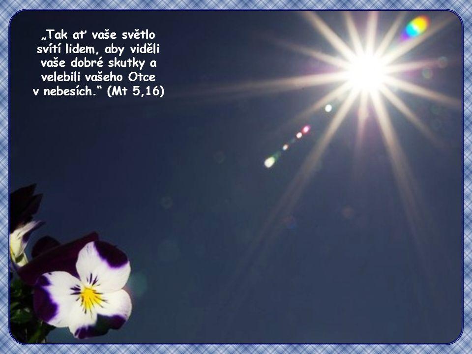 """""""Tak ať vaše světlo svítí lidem, aby viděli vaše dobré skutky a velebili vašeho Otce v nebesích. (Mt 5,16)"""
