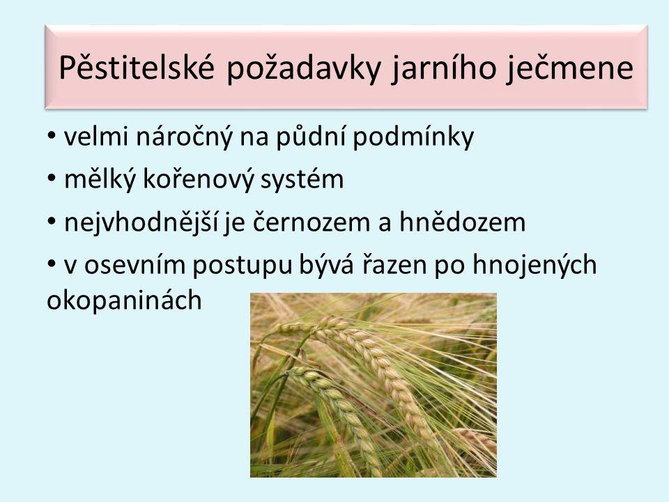 Pěstitelské požadavky jarního ječmene • velmi náročný na půdní podmínky • mělký kořenový systém • nejvhodnější je černozem a hnědozem • v osevním post