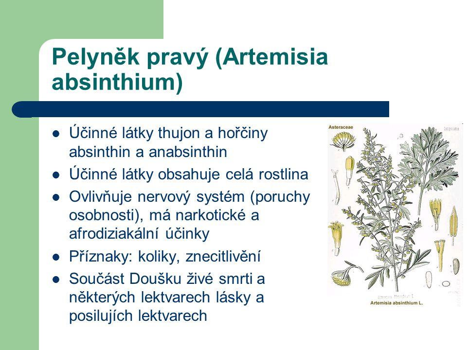 Pelyněk pravý (Artemisia absinthium)  Účinné látky thujon a hořčiny absinthin a anabsinthin  Účinné látky obsahuje celá rostlina  Ovlivňuje nervový systém (poruchy osobnosti), má narkotické a afrodiziakální účinky  Příznaky: koliky, znecitlivění  Součást Doušku živé smrti a některých lektvarech lásky a posilujích lektvarech