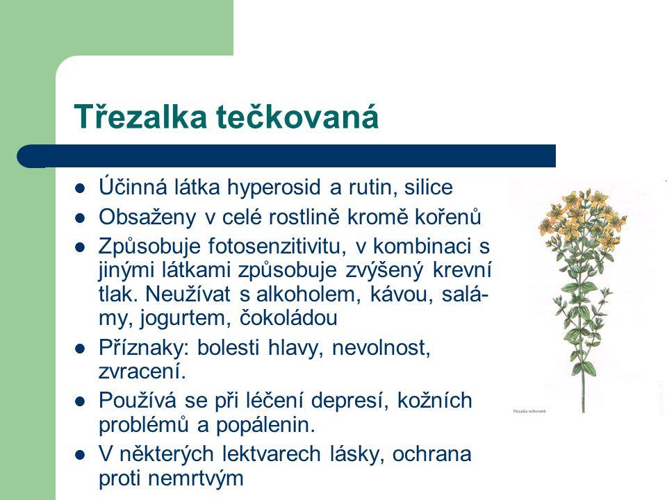 Třezalka tečkovaná  Účinná látka hyperosid a rutin, silice  Obsaženy v celé rostlině kromě kořenů  Způsobuje fotosenzitivitu, v kombinaci s jinými látkami způsobuje zvýšený krevní tlak.
