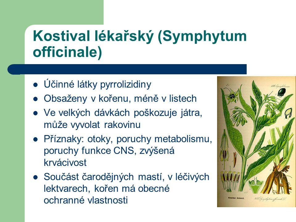 Kostival lékařský (Symphytum officinale)  Účinné látky pyrrolizidiny  Obsaženy v kořenu, méně v listech  Ve velkých dávkách poškozuje játra, může vyvolat rakovinu  Příznaky: otoky, poruchy metabolismu, poruchy funkce CNS, zvýšená krvácivost  Součást čarodějných mastí, v léčivých lektvarech, kořen má obecné ochranné vlastnosti