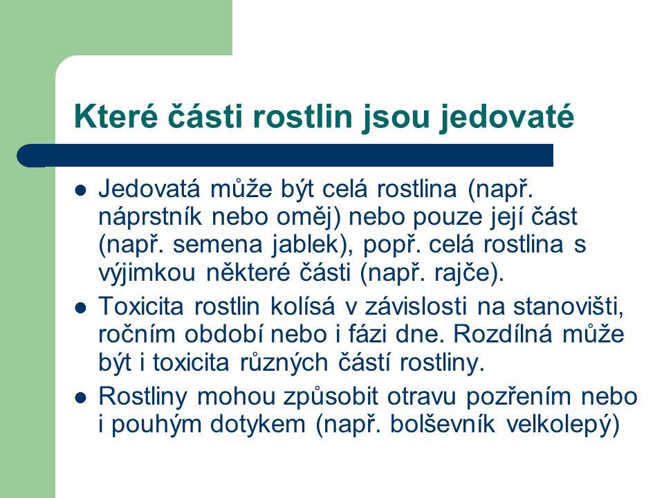 Bez černý (Sambucus nigra)  Účinné látky taniny a organické kyseliny  Jedovaté jsou listy, kůra a čerstvé plody.