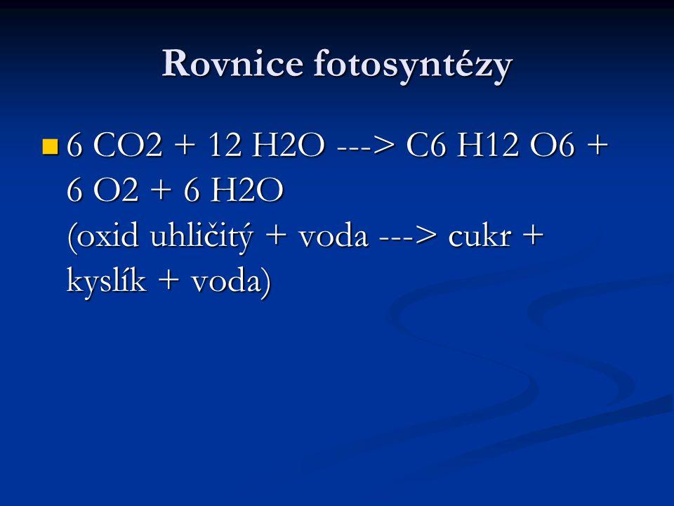 Rovnice fotosyntézy  6 CO2 + 12 H2O ---> C6 H12 O6 + 6 O2 + 6 H2O (oxid uhličitý + voda ---> cukr + kyslík + voda)