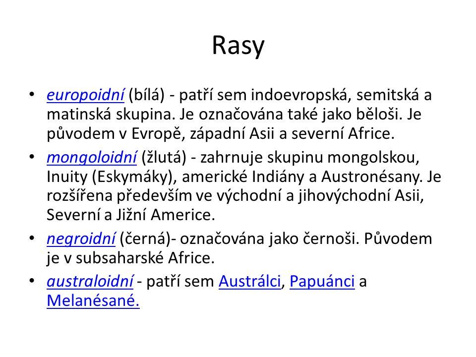 Rasy • europoidní (bílá) - patří sem indoevropská, semitská a matinská skupina.