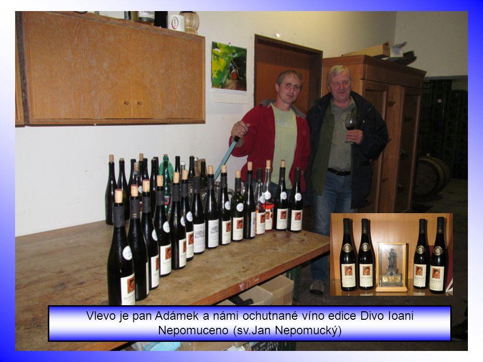 Před sklepem Adámkova vinařství ve Višňovém u Znojma