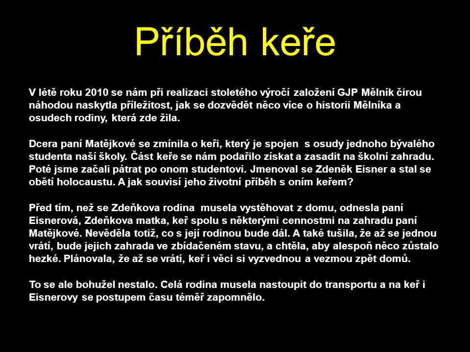 """1.6.2011 Co nám dal projekt """"Zdeněk Eisner ?,,Uvědomila jsem si, jak ta doba musela být hrozná."""
