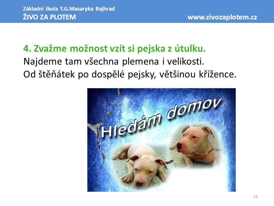 13 Základní škola T.G.Masaryka Rajhrad ŽIVO ZA PLOTEM www.zivozaplotem.cz 4. Zvažme možnost vzít si pejska z útulku. Najdeme tam všechna plemena i vel