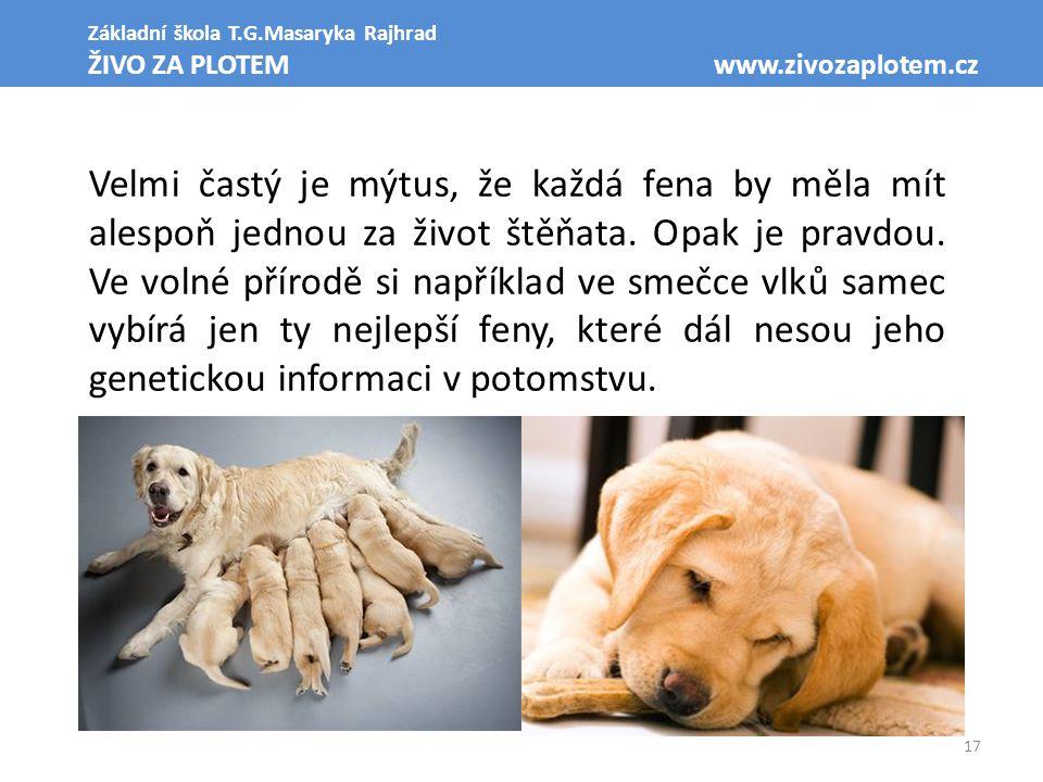 17 Základní škola T.G.Masaryka Rajhrad ŽIVO ZA PLOTEM www.zivozaplotem.cz Velmi častý je mýtus, že každá fena by měla mít alespoň jednou za život štěň