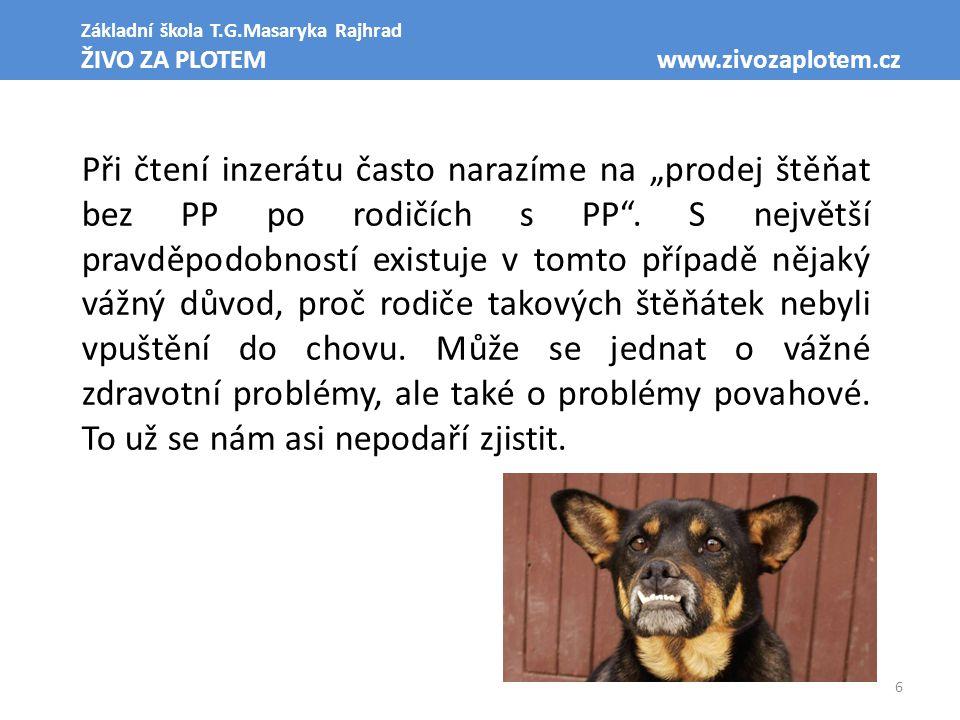 """6 Základní škola T.G.Masaryka Rajhrad ŽIVO ZA PLOTEM www.zivozaplotem.cz Při čtení inzerátu často narazíme na """"prodej štěňat bez PP po rodičích s PP""""."""