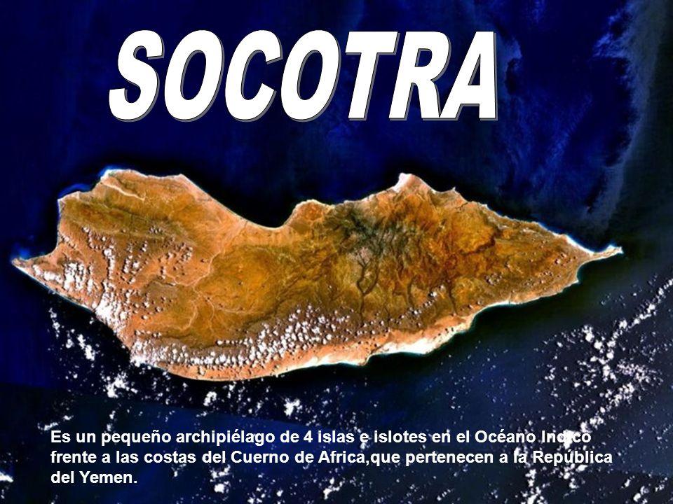 Socotra Es un pequeño archipiélago de 4 islas e islotes en el Océano Indico frente a las costas del Cuerno de Africa,que pertenecen a la República del Yemen.