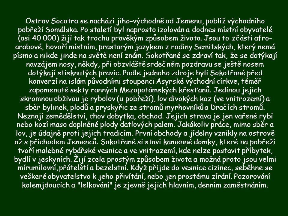 En las islas se habla un idioma semítico propio, el soqotri, que está relacionado con otros idiomas de la península Arábiga como el Mahri y el Dhofari o Jibali.