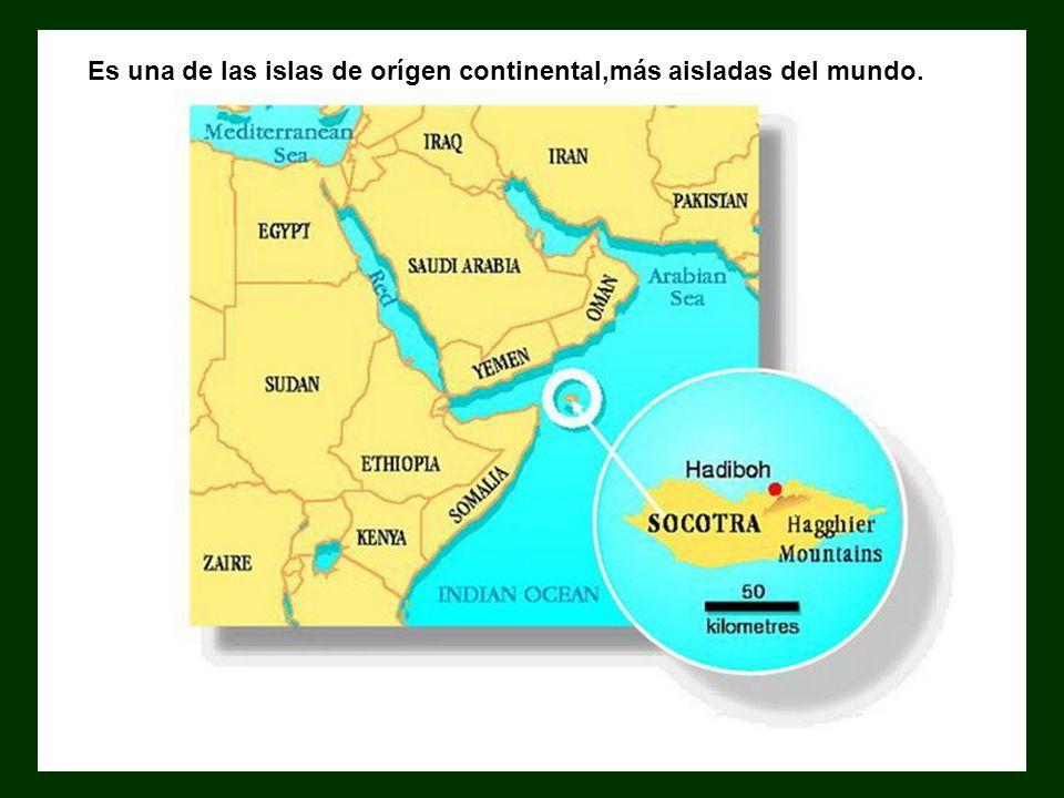 Es una de las islas de orígen continental,más aisladas del mundo.