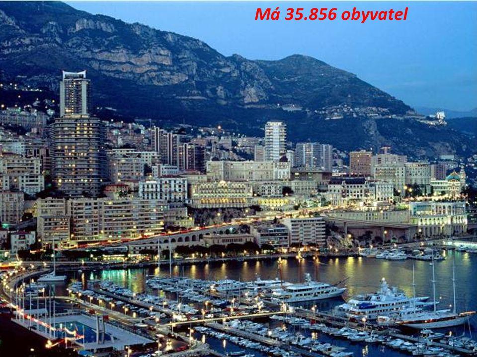 O bezpečnost Monaka se stará 500 policistů. Monako je stát s největším počtem policistů na světě v přepočtu na 1 obyvatele.