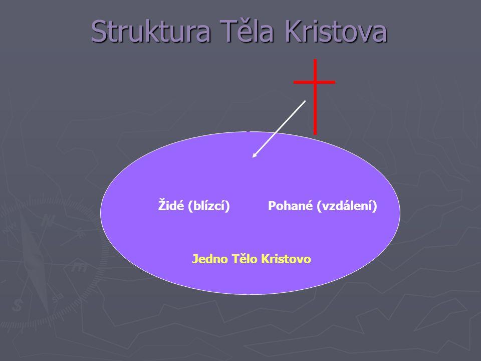 Struktura Těla Kristova Židé (blízcí)Pohané (vzdálení) Jedno Tělo Kristovo