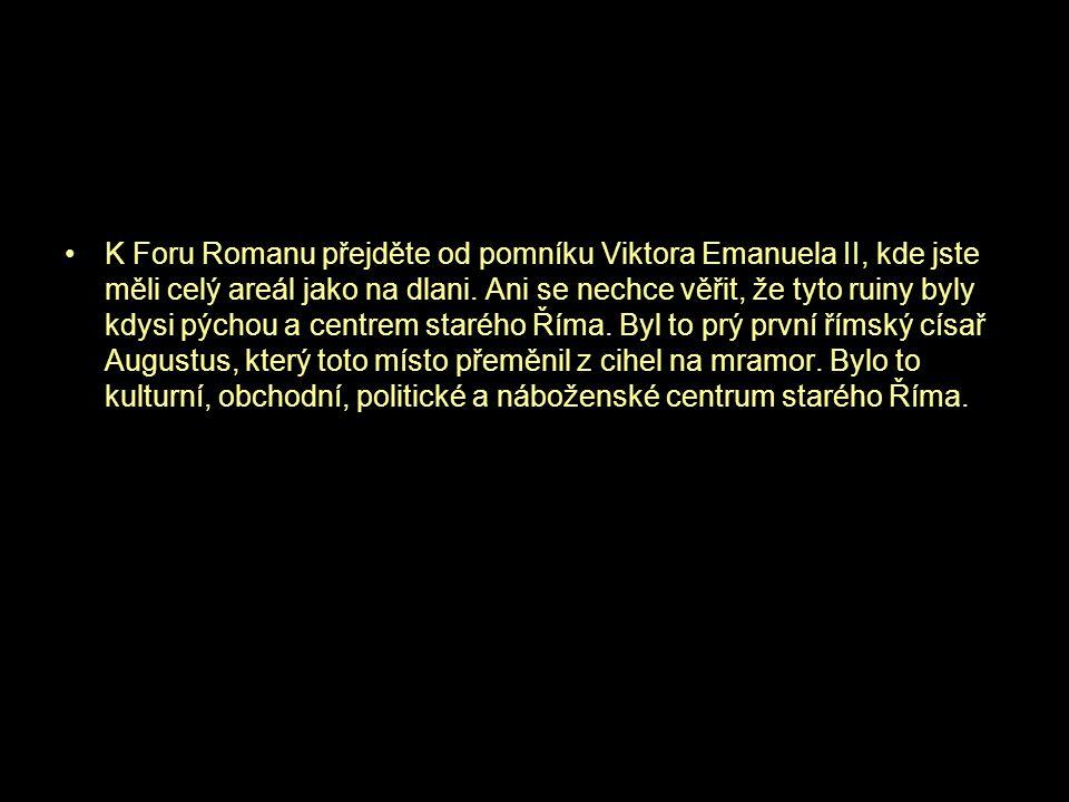 •K Foru Romanu přejděte od pomníku Viktora Emanuela II, kde jste měli celý areál jako na dlani. Ani se nechce věřit, že tyto ruiny byly kdysi pýchou a