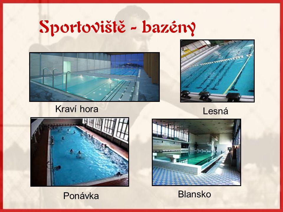 K nejlepším plavcům, kteří studovali na sportovním gymnáziu, patří: Hana Černá Petr Kratochvíl Dana Chalupová...