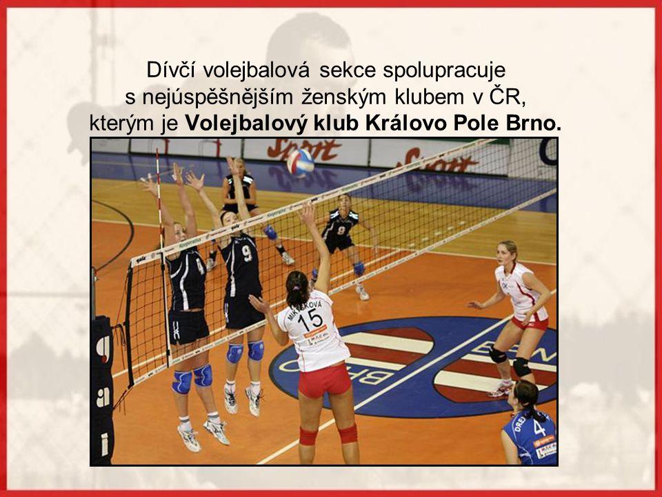 Úspěchy dívek Mezi lety 1990 až 2007 získaly dívky celkem 19 zlatých, 13 stříbrných a 6 bronzových medailí.