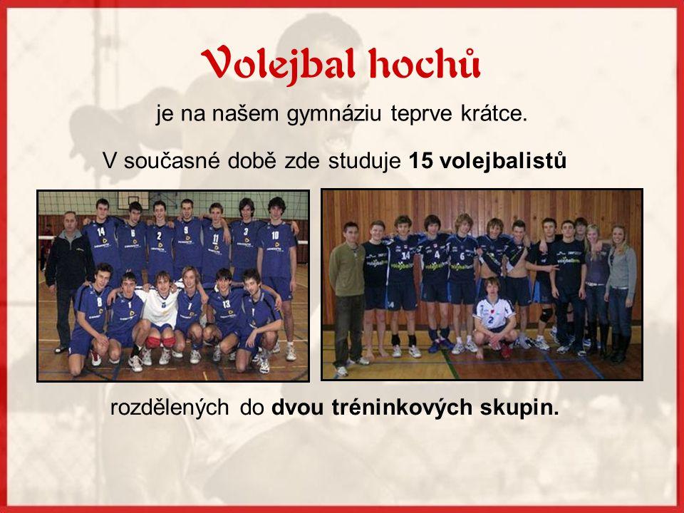 Dívčí volejbalová sekce spolupracuje s nejúspěšnějším ženským klubem v ČR, kterým je Volejbalový klub Královo Pole Brno.