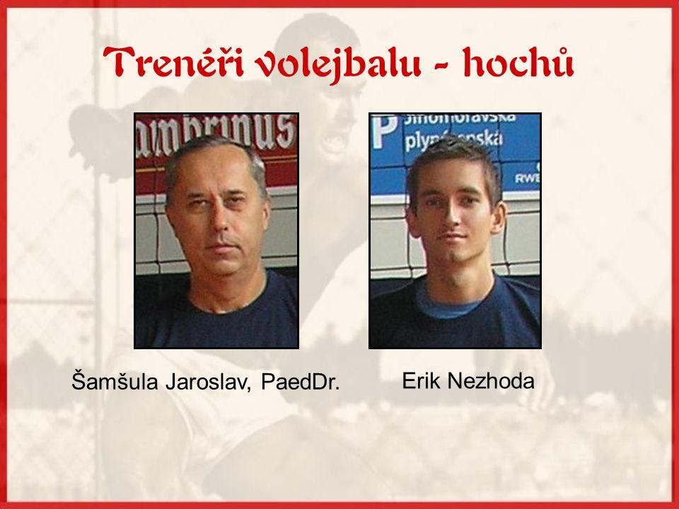 Volejbal hochů V současné době zde studuje 15 volejbalistů rozdělených do dvou tréninkových skupin.