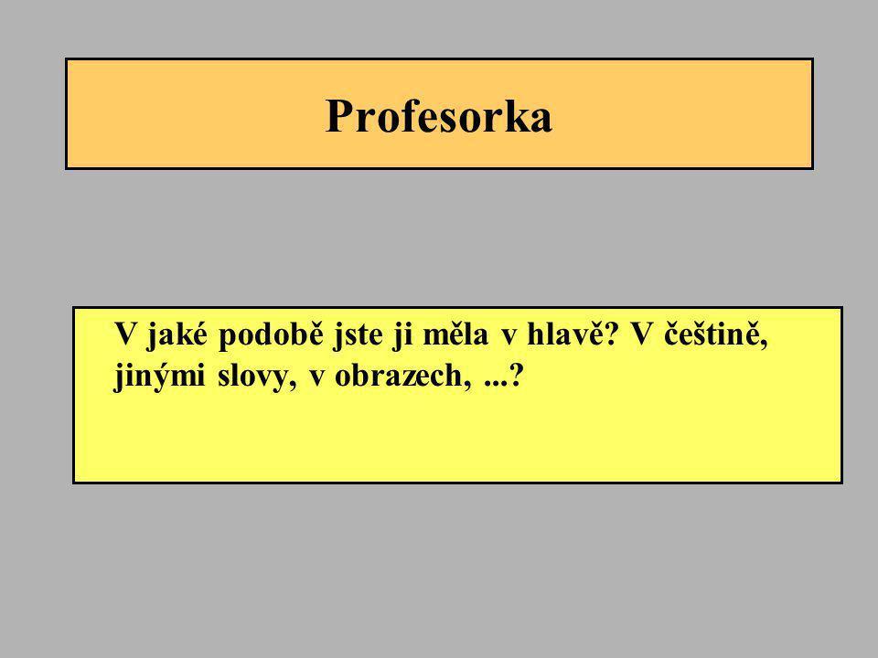 Profesorka V jaké podobě jste ji měla v hlavě? V češtině, jinými slovy, v obrazech,...?