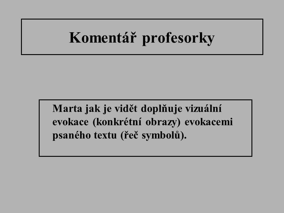 Komentář profesorky Marta jak je vidět doplňuje vizuální evokace (konkrétní obrazy) evokacemi psaného textu (řeč symbolů).