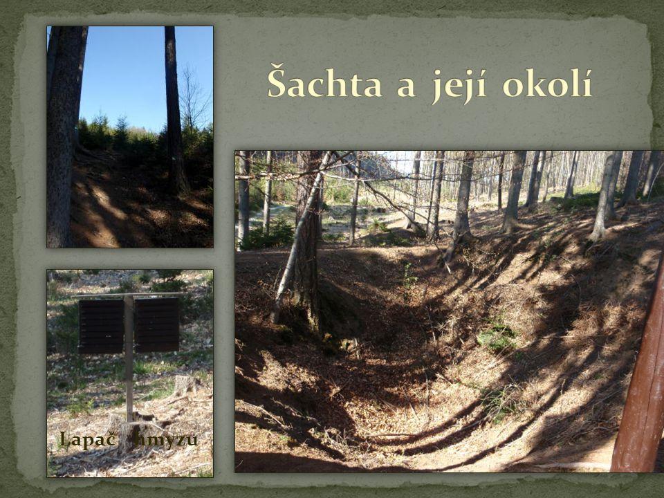Šachta sv.Jiří Šachta pochází z nejstarší etapy dolování.
