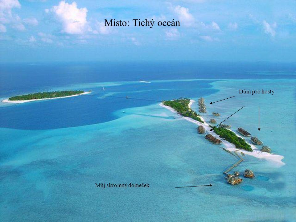 Ostrov kde budeme grilovat.Bylo to postaveno na poslední chvíli.