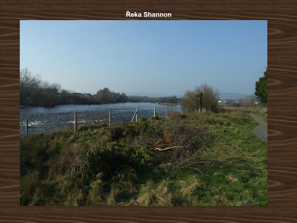 Řeka Shannon