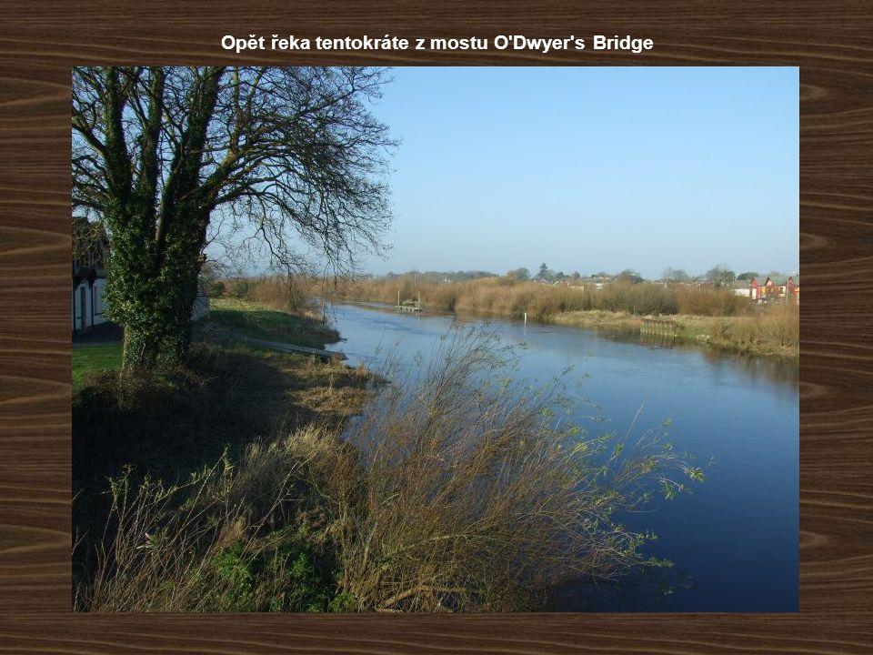 Opět řeka tentokráte z mostu O'Dwyer's Bridge