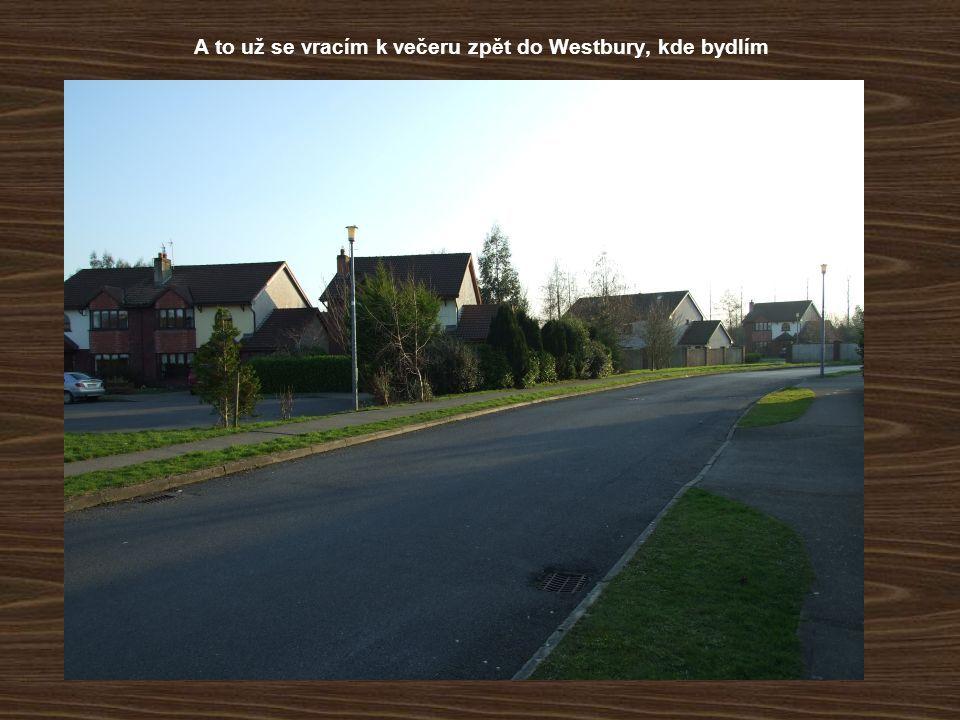 A to už se vracím k večeru zpět do Westbury, kde bydlím