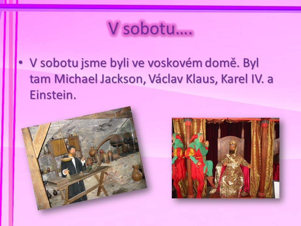 • V sobotu jsme byli ve voskovém domě. Byl tam Michael Jackson, Václav Klaus, Karel IV. a Einstein.