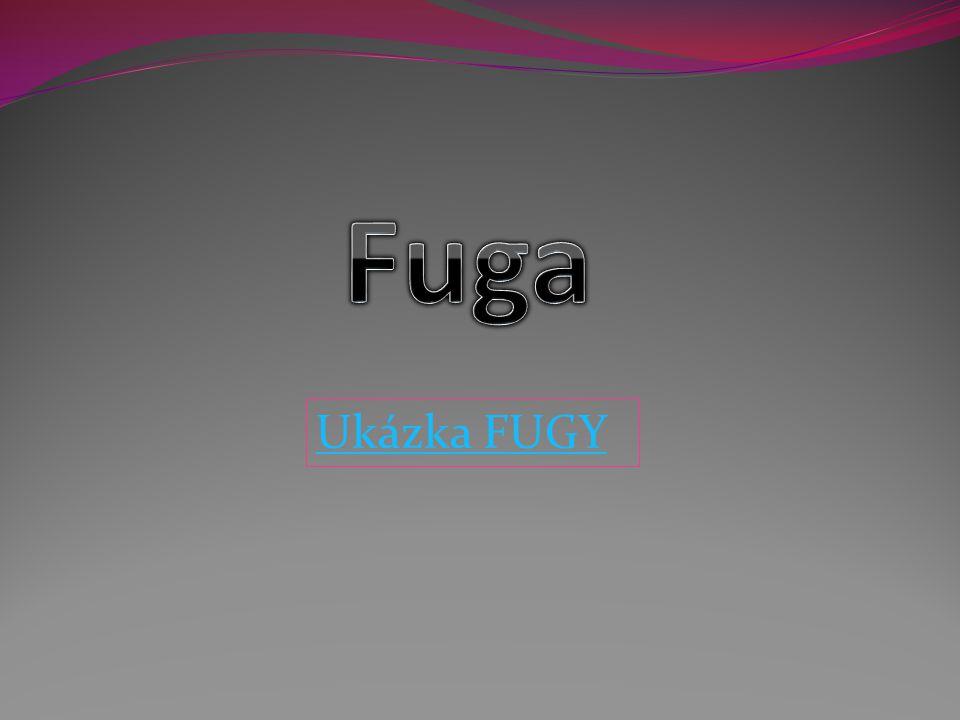 Ukázka FUGY